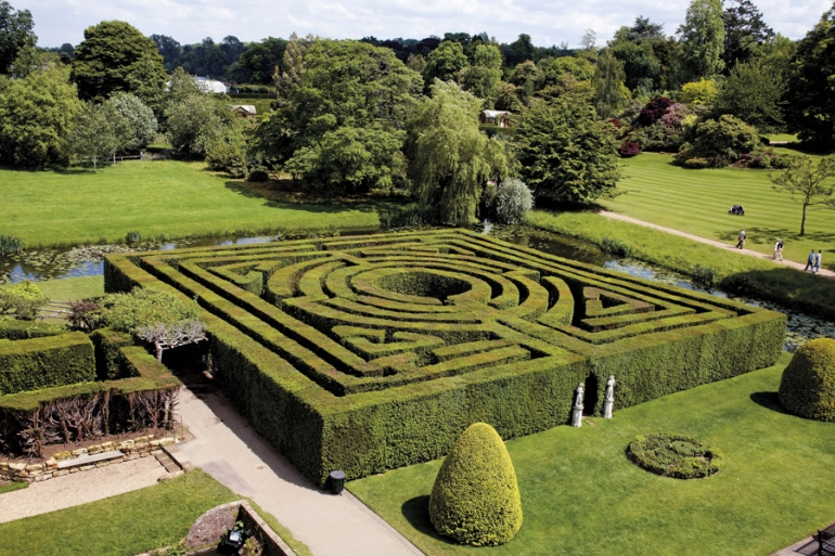 Maintaining the Yew Maze at Hever Castle